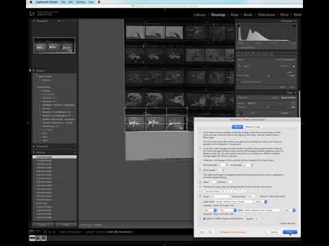 Dividing a contact sheet into strips of 3 frames using the Any Crop Lightroom plugin