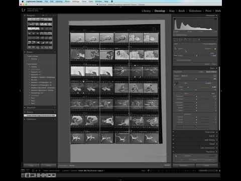 Measuring gaps on a contact sheet with the Any Crop Lightroom plugin