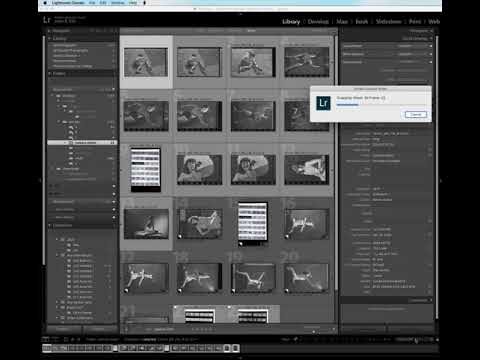 Dividing a contact sheet into frames using the Any Crop Lightroom plugn